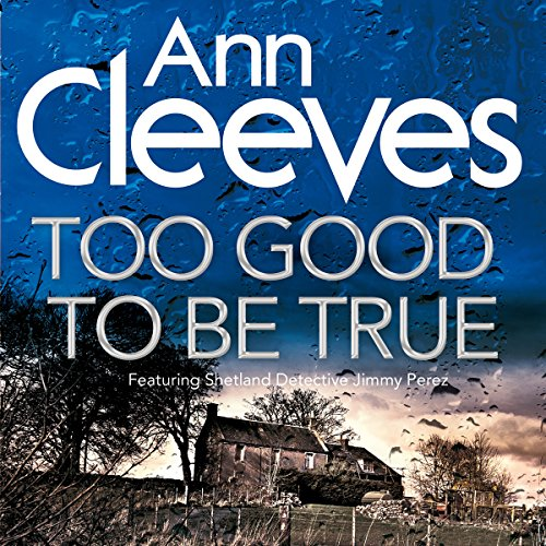 Too Good to Be True audiobook cover art
