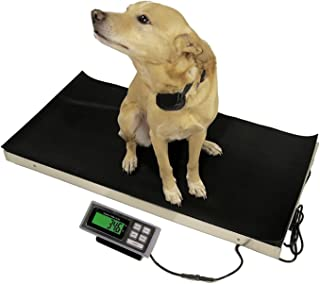 Vet Livestock Pet Veterinary Platform Scale 700 lbs