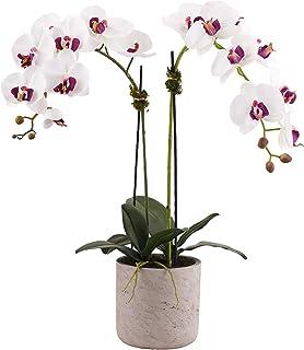 وعاء زهور للأماكن المغلقة من ليتل جرين هاوس، أبيض وبنفسجي
