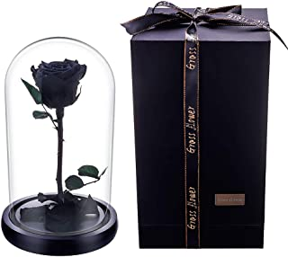 JaneDream Preserved Fresh Rose Flower with Box 100% Real Rose Enchanted Black Rose Gift Ideas for Valentine's Day, Anniversary, Birthday