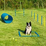 Sowsun Dog Agility Equipment, Outdoor Games Exercise Training Obstacle Course Hurdles for Jumping Practice, Agility Starter Kit with Carrying Case