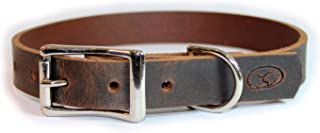 sleepy pup Full Grain Thick Leather Dog Collar - Made in Virginia