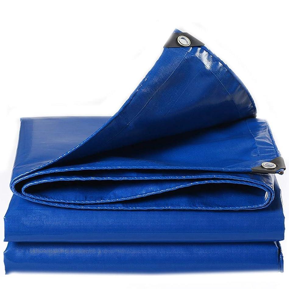 容量障害者変位LCAIHUA 防水シート青アルミ錫ボタンホール老化防止絶縁倉庫トラック、13サイズ (Color : Black, Size : 3X5M)