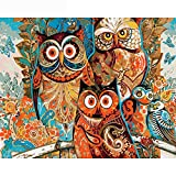 WKJDE Holiday Gift Colored Owl 40X50Cmdiamond Painting Kits for Adults Fidget Spinner Kids Toys DIY 5D Christmas