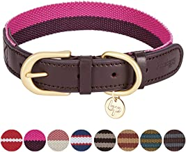 Blueberry Pet 11 Patterns Vintage Polyester Webbing & Genuine Leather Combo Dog Collars Leashes
