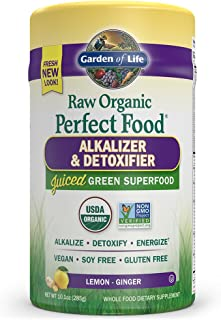 Garden of Life Raw Organic Perfect Food Alkalizer & Detoxifier 10.1oz (285g) Powder