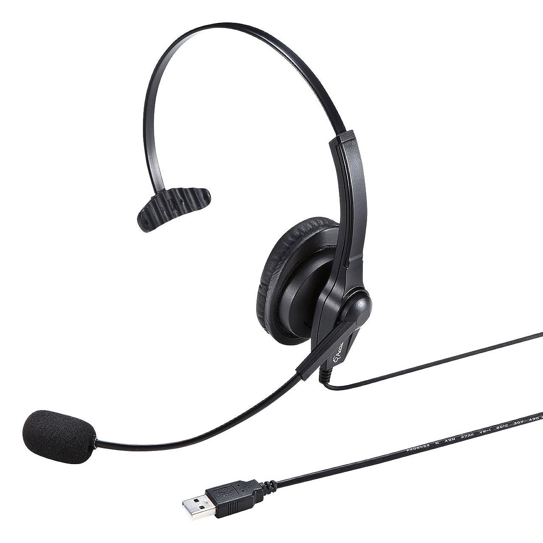 サンワサプライ USBヘッドセット/ヘッドホン MM-HSU03BK