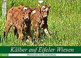 Kälber auf Eifeler Wiesen (Wandkalender 2022 DIN A4 quer): Liebenswerter Nachwuchs (Monatskalender, 14 Seiten ) (CALVENDO Tiere)