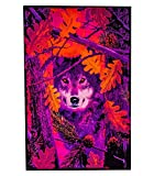 Opticz Autumn Wolf Blacklight Reactive Poster Blacklight Poster 23 x 35in