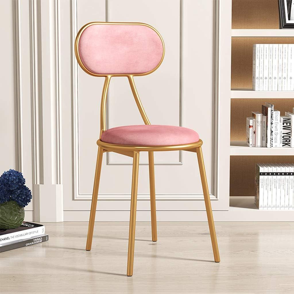 XIAOZHUZHU Coiffeuse Chaise, Restaurant Dossier Chaise Fille Chambre Maquillage Chaise Salon Loisirs Chaise Fer Meubles décoratifs en métal Chaise de Salle à Manger,Gris Pink