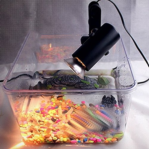 Bazaar Incubatie Keramische Warmte UV UVB Lamp Lichthouder Brooder Reptiel Basking Licht