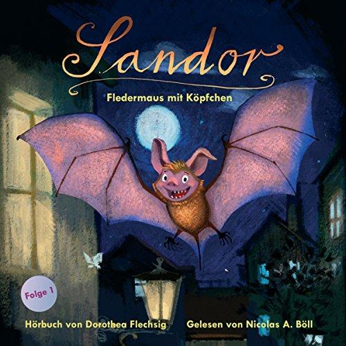 Fledermaus mit Köpfchen audiobook cover art