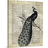 """Gallery-Wrapped Canvas Entitled Vintage Dictionary Art: Peacock by Circle Art Group 29""""x36"""""""