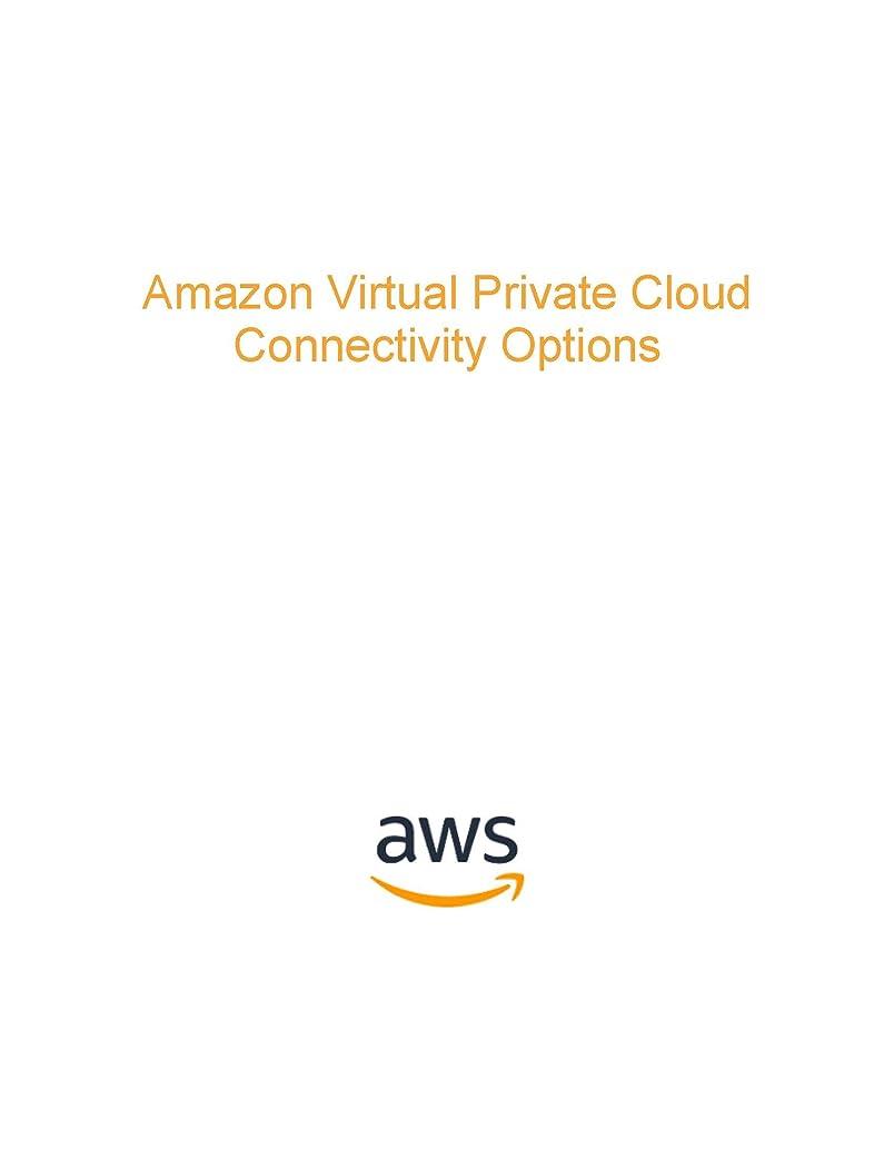 アーティファクトオーストラリア人安全性Amazon Virtual Private Cloud Connectivity Options (AWS Whitepaper) (English Edition)