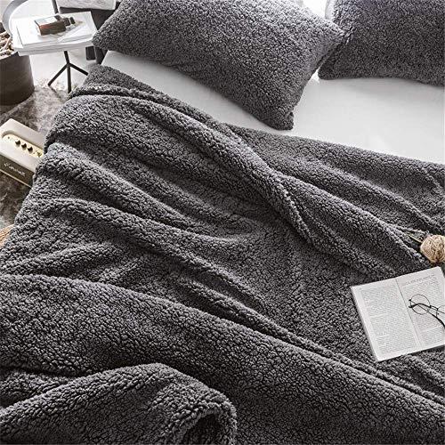 WLGQ Manta de Terciopelo de Cordero de Doble Cara Doble Uso Individual Doble cálida Manta de Doble Capa Funda de edredón Manta de Terciopelo de Cordero de Tres Piezas + 2 Fundas de Almohada (Gris