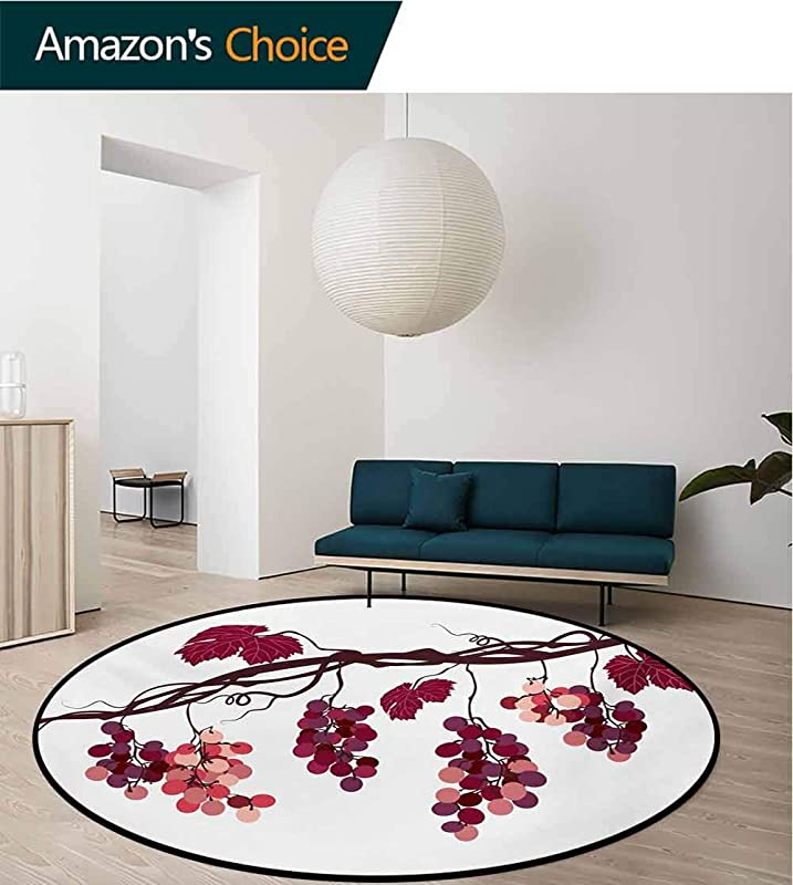 RUGSMAT Fruit Modern Machine Washable Round Bath Mat Vine Branch With Colorful Grapes Agriculture Themed Illustration Healthy Food Options Non Slip Soft Floor Mat Home Decor Diameter 24 Inch