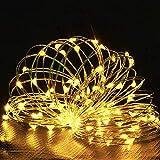 イルミネーションライト 電池式 10m 100電球LEDボールライト クリスマスツリー 電飾 8点灯モード LEDガーデンライト飾り ロマンチック雰囲気 屋外 室内 正月 誕生日 結婚式 庭 広場 街路樹 (暖色)