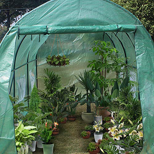 Cotify Greenhouses for Outdoors 15′x7′x7′,Heavy Duty Greenhouse Plant Gardening Dome Greenhouse Tent,Steel Pop up Greenhouse Tent Frame,2 Rolled-Up Windows,UV Protection,Waterproof