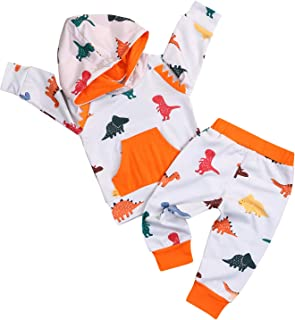 Infant Toddler Baby Boy Girl Dinosaur Outfit Long Sleeve Hoodie Top Sweatshirt Pants 2Pcs Clothes Set