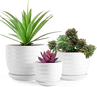 Sandope Glazed 6.2+5.2+4.2 in Succulent Plant Pots - Cylindrical Ceramic Planters with Connected Saucer, Modern Ceramic Fl...