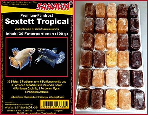 SAHAWA 300 Futterportionen, Sextett Tropical bestehend aus 6X Rote Mückenlarven,6 x weiße Mückenlarven,3 x Muschelfleisch, 3 x Mysis, 6 x Daphnien, 6 x Artemia,1 kg, 10 Blister