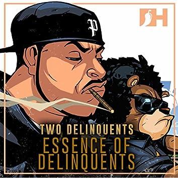Essense Of Delinquents