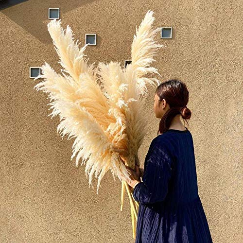 dorit 100cm Reis weiß Natural Reed getrocknete Blume Big Pampas Gras Bouquet Hochzeit Blume Zeremonie Dekoration Bündel von 3 - Blumenarrangement Dekor