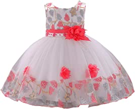 KILO&METERS Embroidery 3D Flower Girl Dress Tulle Lace Formal Party Baby Dress 3M-9T