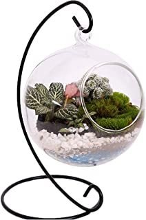 10L0L Charming Clear Hanging Glass Ball Vase Air Plant Terrarium Kit/Succulent Flowerpot Container w/Black Metal Stand (Big)