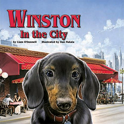 Winston in the City audiobook cover art