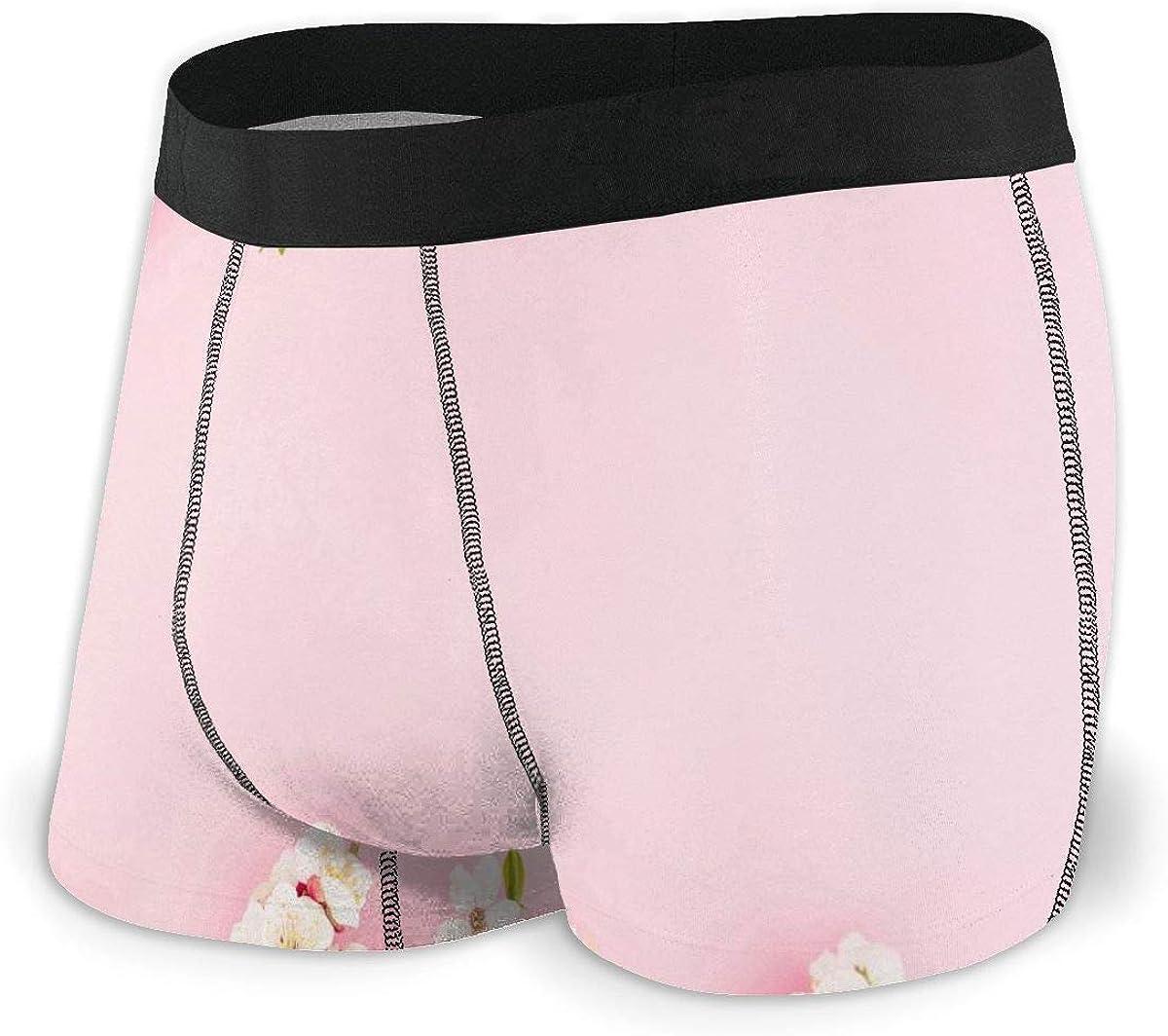 Randolph Wordsworth Mens Boxer Briefs Special Spring Flowers Pink Boys Trunks Underwear Short Leg Breathable Man