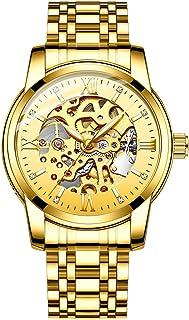 Original Delicate Skeleton Mechanical Watches for Men Automatic Slef-Wind Wrist Watch Luxury Stainless Steel Watch, Luminous Dial, 30M Waterproof