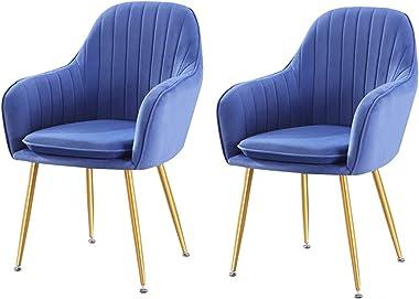 VEESYV Set of 2 Modern Design Dining Chair Sturdy Metal Legs for Living Room Bedroom Kitchen (Color : Sky Blue)