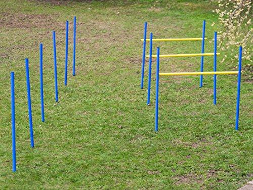 Agility Set für individuelles Hundetraining, Hürden und Slalomstangen mit massiven Erdnägeln, Hundesport