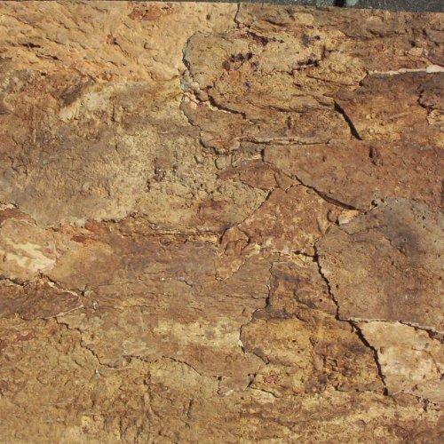 Terra Exotica Zierkork-Rückwand 60 x 30 cm Desert, Kork Rückwand, Korkrückwand, Zierkorkrückwand