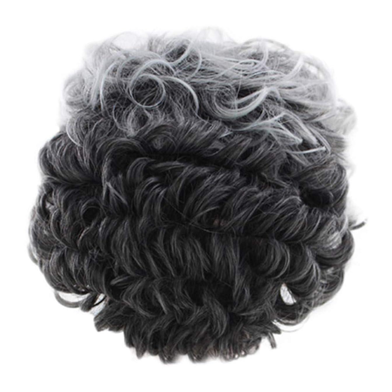 線チャンバー判定女性のかつらグレー短い巻き毛のファッションセクシーなかつらローズネット