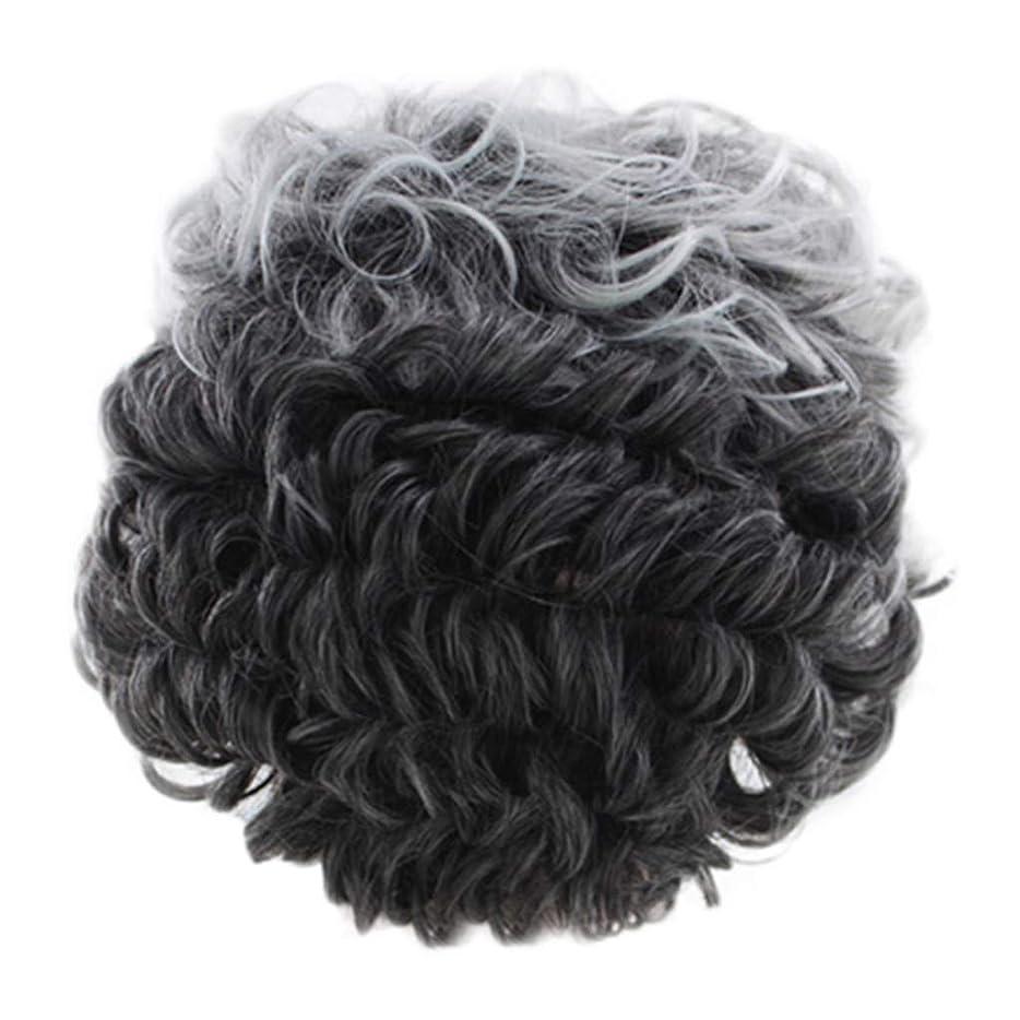 奴隷シングル世代女性のかつらグレー短い巻き毛のファッションセクシーなかつらローズネット