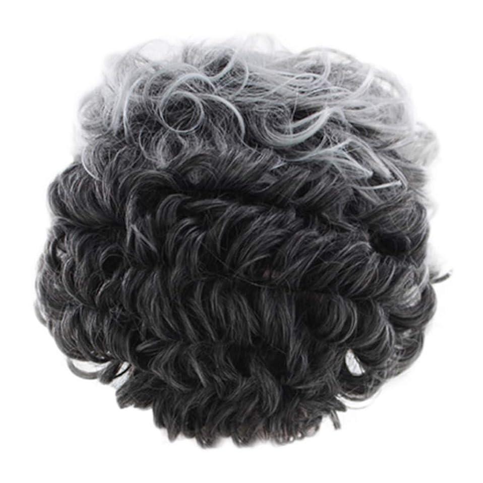 祝うアストロラーベ槍女性のかつらグレー短い巻き毛のファッションセクシーなかつらローズネット