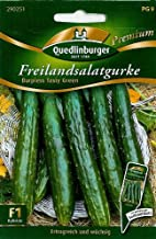 Freilandsalatgurke, Burpless Tasty Green F1