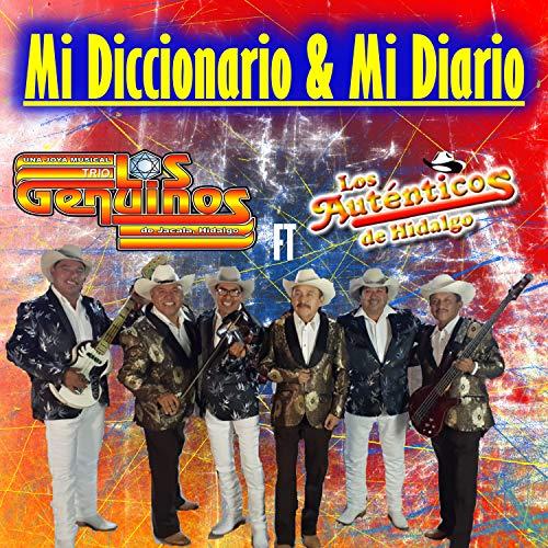 Mi Diccionario & Mi Diario