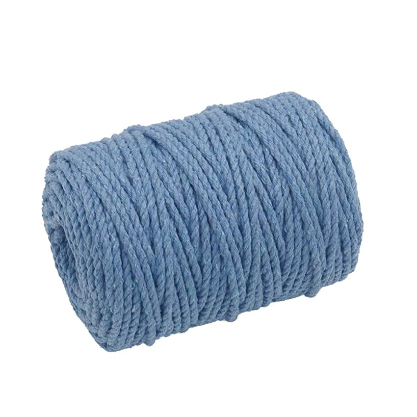 Tenn Well Macrame Cord 4mm, 165 Feet 3Ply Twisted Cotton Macrame Rope for Making Wall Hangings, Plant Hangers and Craft Projects (Blue)