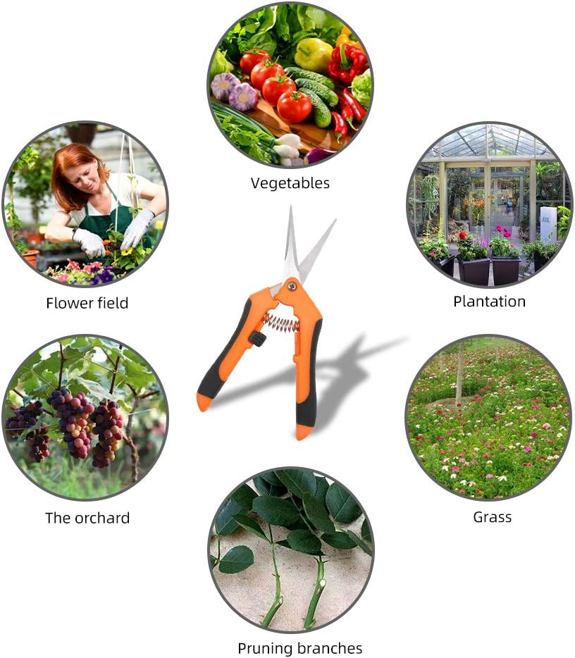 2 Packs Pruning Shears,Gardening Hand Pruner Pruning,Straight ...