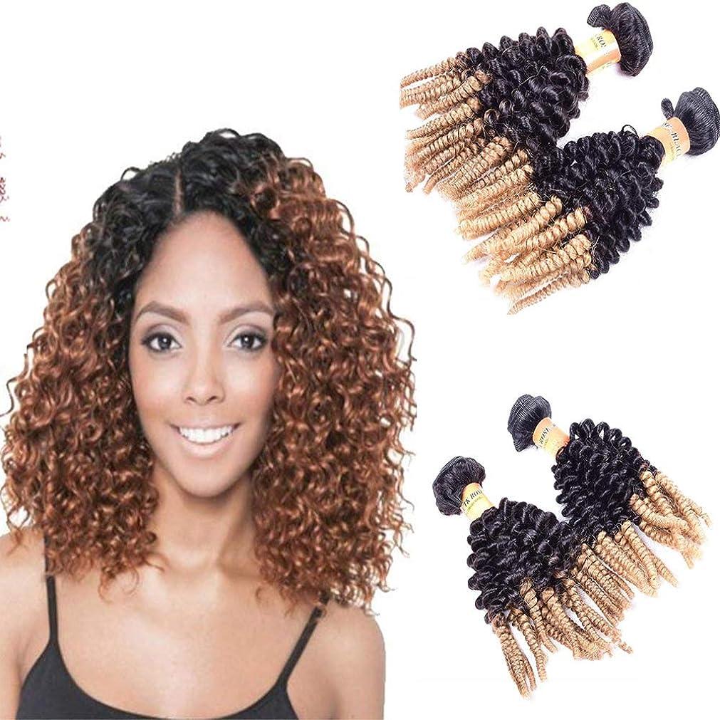 人差し指小数ホイップMorningsilkwigバンドルアフロ変態カーリー人間の毛髪延長織りT1b27色6Aグレード100%レミーブラジルバージンヘア女性ヘアエクステンション(14インチ100g、T1b27)