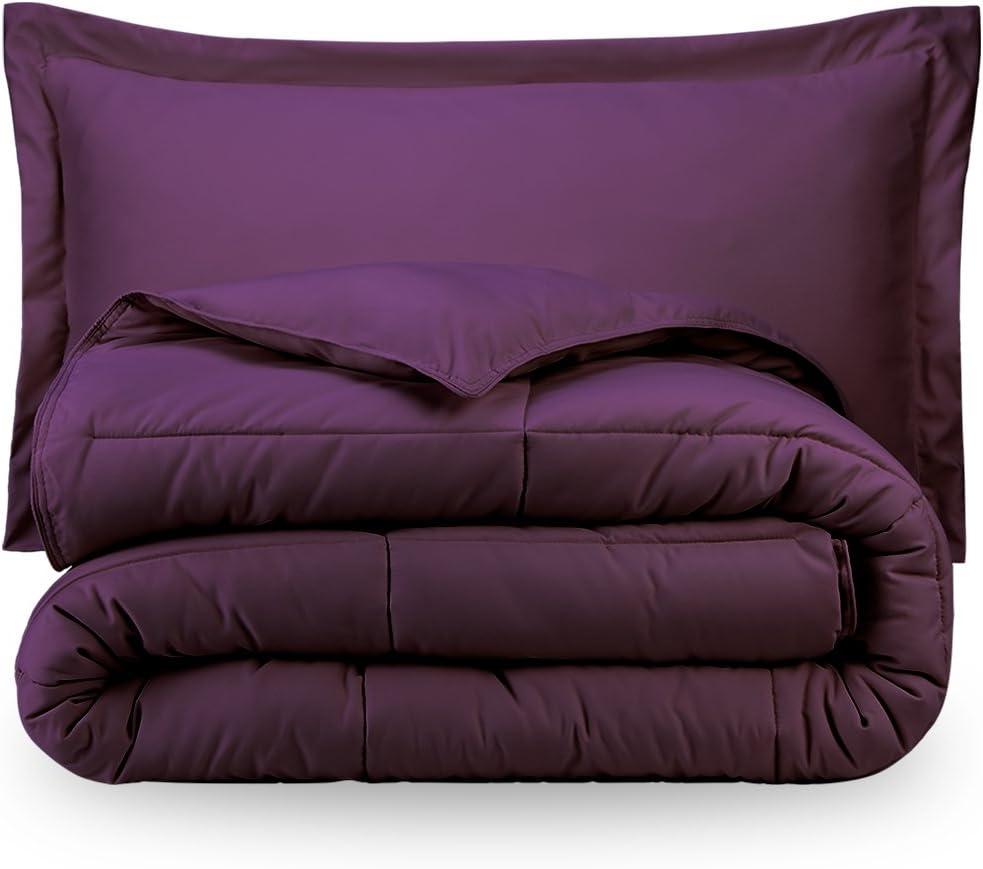 Ivy Union Twin Solid Comforter & Sham Set - Plum