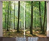ABAKUHAUS Naturaleza Cortinas, Granja del Bosque de la mañana, Colores Vibrantes Apto Lavadora Set de Dos Paños, 280 x 225 cm, Verde marrón
