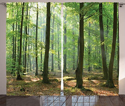 ABAKUHAUS Natur Rustikaler Gardine, Morgen Wald Bauernhaus, Schlafzimmer Kräuselband Vorhang mit Schlaufen und Haken, 280 x 225 cm,