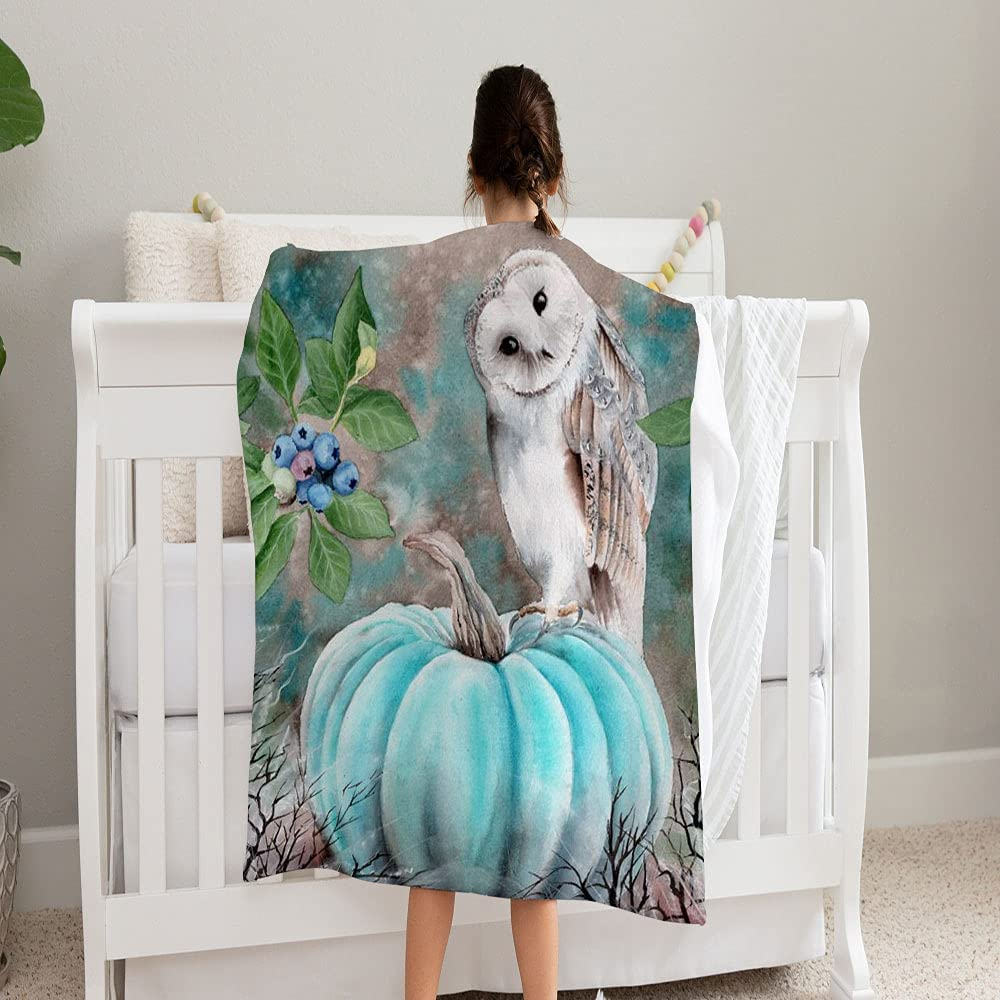 GANTEE Watercolor Barn Owl Sitting On 35% OFF and Soft Co Direct sale of manufacturer Super Blanket