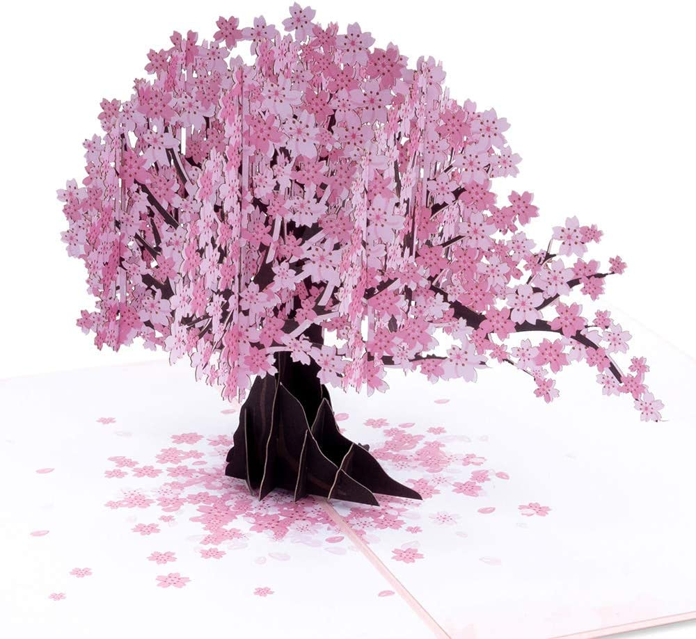 Indianapolis Mall Paper Love Cherry Blossom Pop service Up Popup Greeting 3D Card Cards