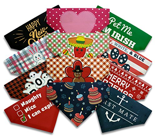Cute Dog Gifts Dog Owners Full Year Holidays