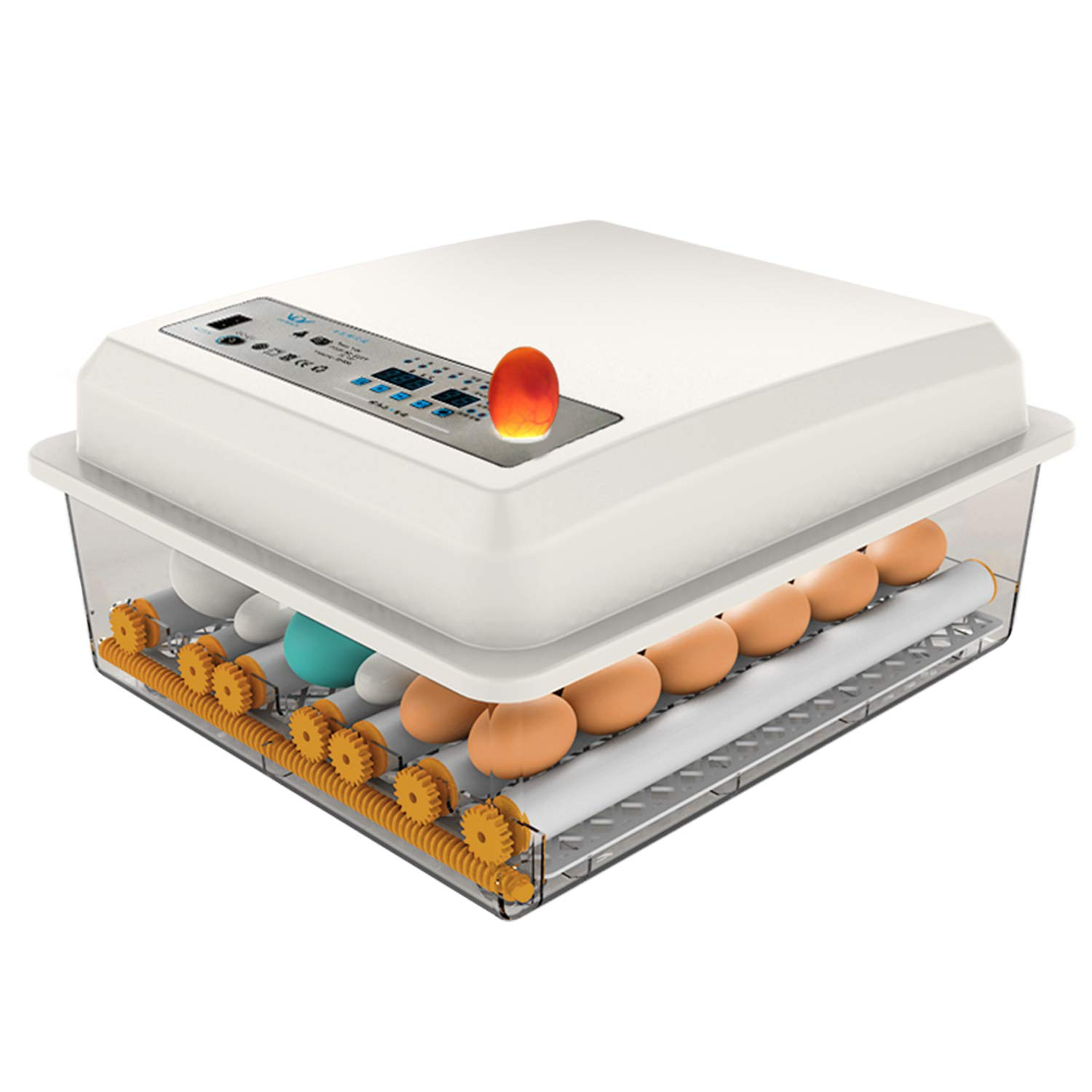 JAEDO Automatic Max 88% OFF Egg Incubator 54~64 Poultry Hatcher Eggs with Al sold out. Au